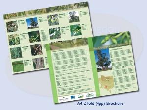brochures-warragul-21